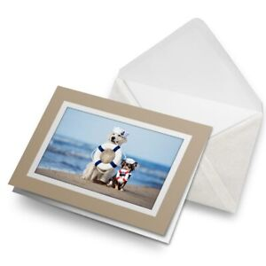 Greetings-Card-Biege-Nautical-Dogs-at-the-Beach-Dog-24491