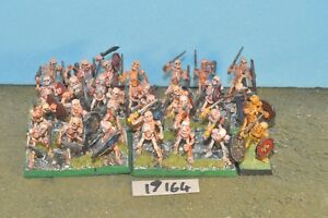 skeleton warriors 28 warhammer sigmar {16} (19164)