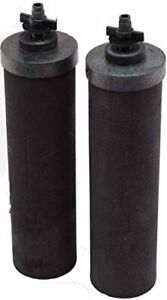 Black Berkey Water Filter Replacement Elements (2-Pack)
