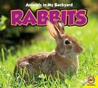 Rabbits with Code by Pamela McDowell (Paperback / softback, 2012)