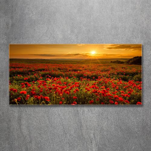 Acrylglas-Bild Wandbilder Druck 120x60 Deko Landschaften Mohnfeld