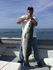 ORIGINAL CRAZY RIG FISHING LURE STRIPED BASS,MACKAREL,