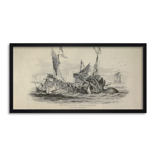 Antiguo Kraken Sepia Peces Barco Pulpo Náutico Largo impresión arte enmarcado