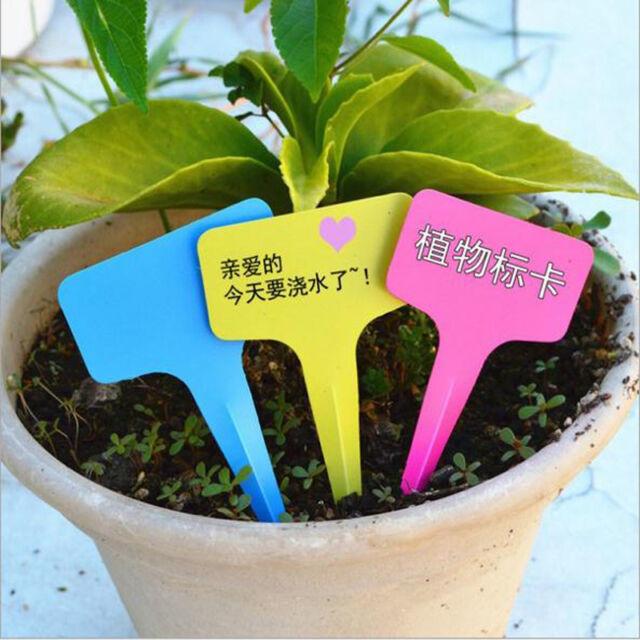 10pcs 10cm x 6cm Pot Plastic T-Type Plant Shrub Tree Labels Tag Markers