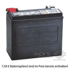Harley Davidson Battery >> Genuine Harley Davidson Agm Motorcycle Battery For Sportster 65958 04b