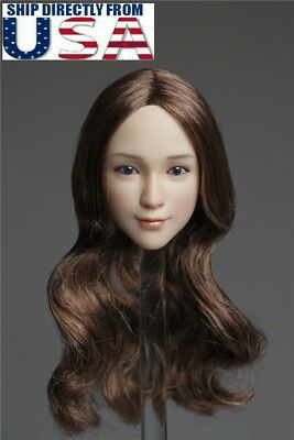 "1//6 Female Head Sculpt C BROWN Hair For 12/"" TBLeague PHICEN Hot Toys Figure USA"
