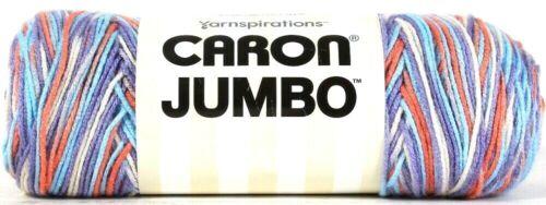 1 Yarnspirations 12 Oz Caron Jumbo 16004 Floral Ombre 4 Med 100/% Acrylic Yarn