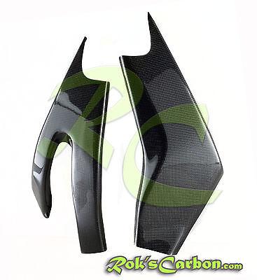 Schwingenschoner Motorrad Yamaha Carbon R1 2015 swing arm protect