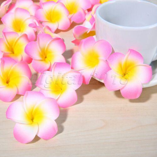 4 cm multicolore Hawaiian Plumeria Flower Head Frangipani Fête de Mariage Décoration Maison
