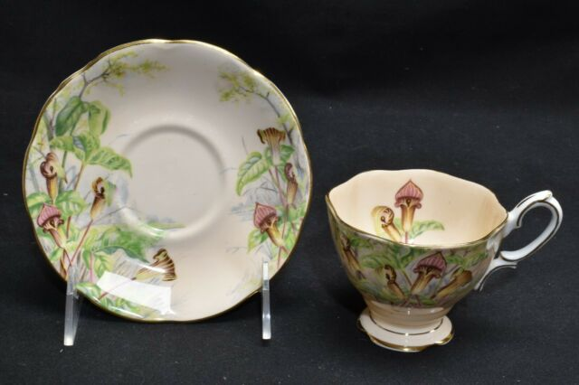 Royal Albert Jack-In-The-Pulpit Cream Pink Cup & Saucer #2