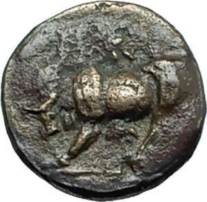 GAMBRION-in-MYSIA-400BC-Authentic-Ancient-Original-Greek-Coin-APOLLO-BULL-i66391
