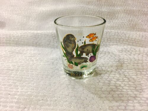 Belize Central America Sea Cow Walruses Manatee Shot Glass