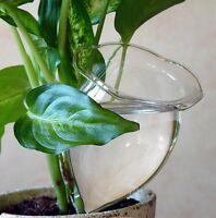 20x automatisch bew sserung set pflanzen wasserspender. Black Bedroom Furniture Sets. Home Design Ideas