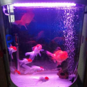 2x-Adjustable-Bubble-Diffuser-Oxygen-Aeration-Pump-Aquarium-Fish-Tank-6A