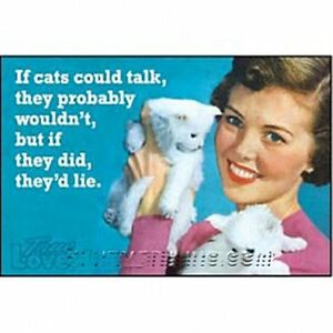 If-Cats-Could-Talk-They-039-d-Lie-funny-fridge-magnet-ep