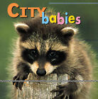 City Babies by Kristen McCurry (Board book)