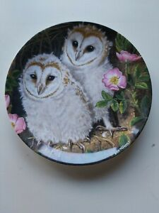Wedgewood-034-The-Baby-Owls-034-by-Dick-Twinney-plate