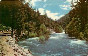 Chrome-Postcard-CA-L132-Kings-River-Kings-Canyon-National-Park-General-Grant