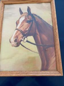Equestrian Thoroughbred Horse Savitt Vtg Lambert 209 Print Framed Glass All Orig