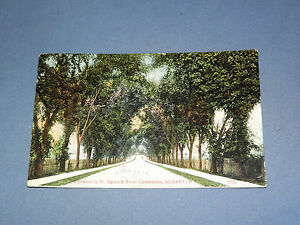 VINTAGE-1908-ST-AGNES-amp-RURAL-CEMETERIES-ALBANY-NEW-YORK-POSTCARD