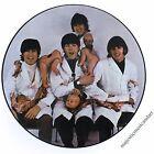 THE BEATLES ORIGINAL PROMO BUTCHER COVER PICTURE DISC VINYL LP N.MINT VERY RARE