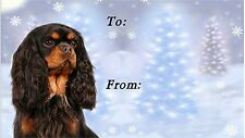 Cavalier King Charles Christmas Labels-Starprint No 3