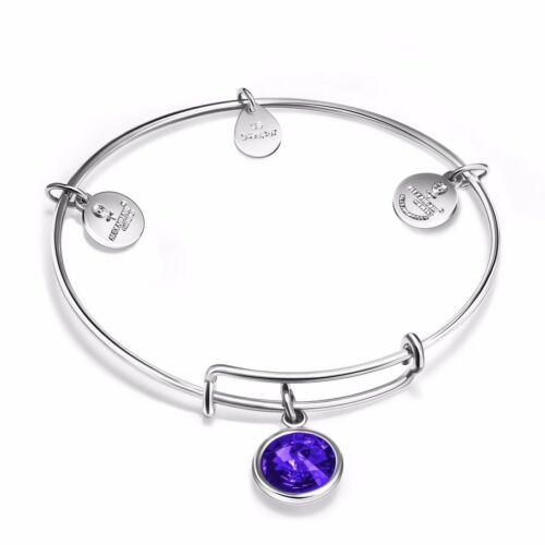 Fine Silver Bangle Chaîne Bracelet Simili Cuir New Designs for 925 Silver Bead Charms