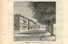 Stampa antica MODENA passeggiata delle mura Emilia 1891 Old antique print