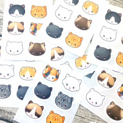 Kawaii Kitty Kawaii Gato pegatinas pegatinas pegatinas kawaii Cat Lindo #1059
