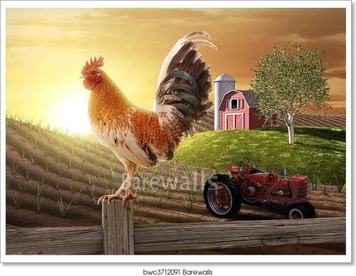 G Country Farm Morning Art Print Home Decor Wall Art Poster