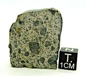 Achondrite-Meteorite-NWA-12537-Eucrite-genomict-breccia-from-outer-space