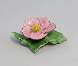 9959063-Porcelain-Table-Flower-Wild-Rose-Pink-Ens-Handmodelliert-7x7cm