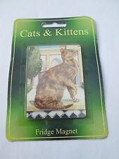 CATS & KITTENS FRIDGE MAGNET- ORIENTAL SHORT HAIR CAT - NEW