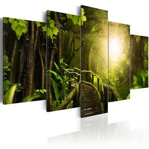 Leinwand-Bilder-xxl-Wald-Landschaft-Natur-Dschungel-Wandbilder-b-A-0322-b-m