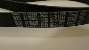 Genuine Man Auxiliary Drive Belt 51 96820 0345 8pk1920 Ebay