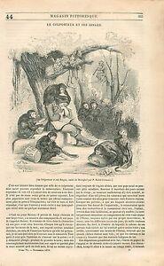 Le-colporteur-et-ses-Singes-d-039-Apres-Brueghel-Peintre-Flamand-GRAVURE-PRINT-1838
