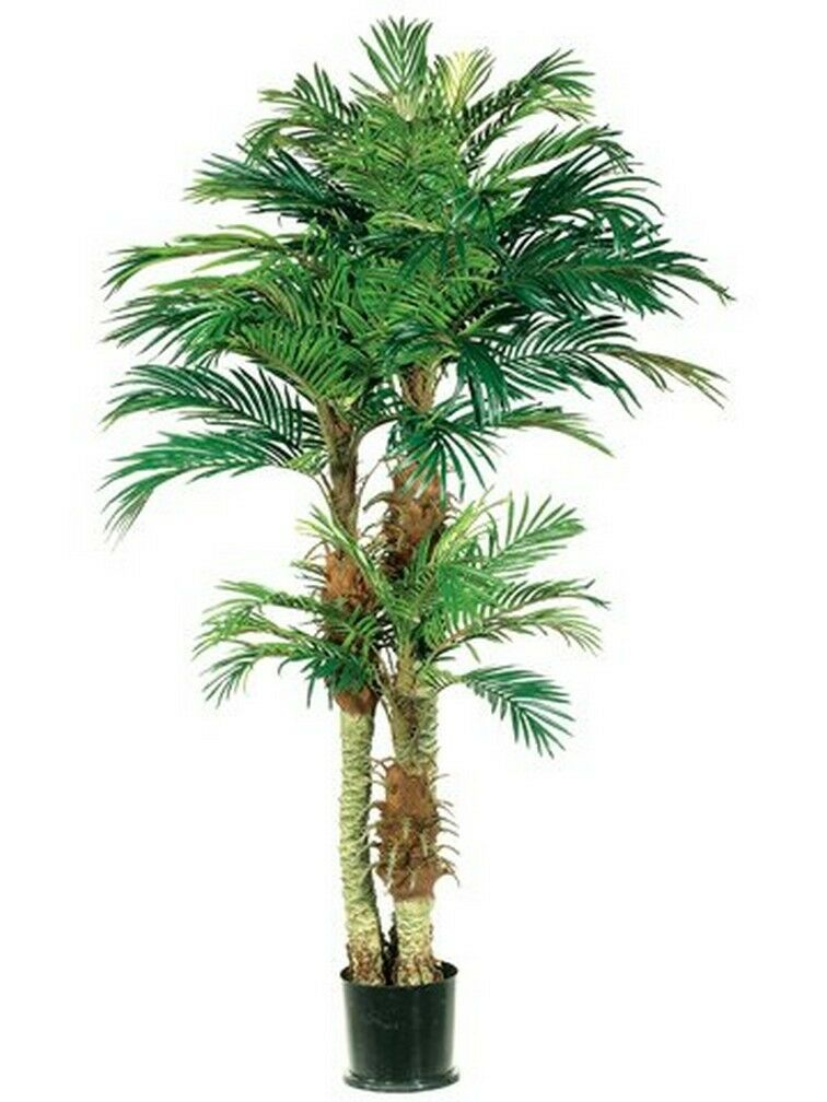 One 6 foot Artificial Triple Trunk Phoenix Palm Tree Potted Date Pool 5 4 Patio