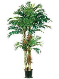 Offer Up Phoenix >> One 6 foot Artificial Triple Trunk Phoenix Palm Tree ...