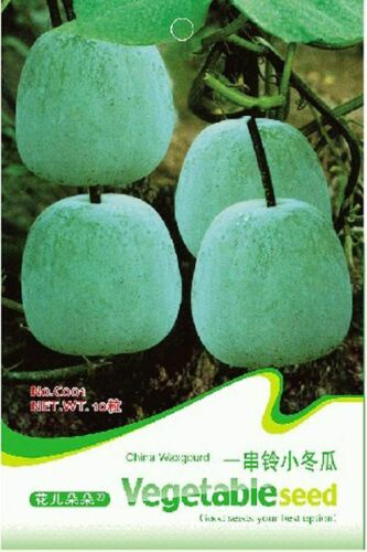 Wax Gourd Seed 20 Seeds Mini Benincasa Hispida Winter Melon Vegetable Seeds C001