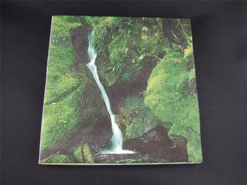 Paper Napkins 3 Ply Pack of 20 Moss and Waterfall.