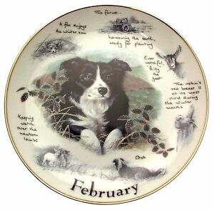 Danbury-Mint-Border-Collie-plate-February-Paul-Doyle-Dog-Plates-CP2172