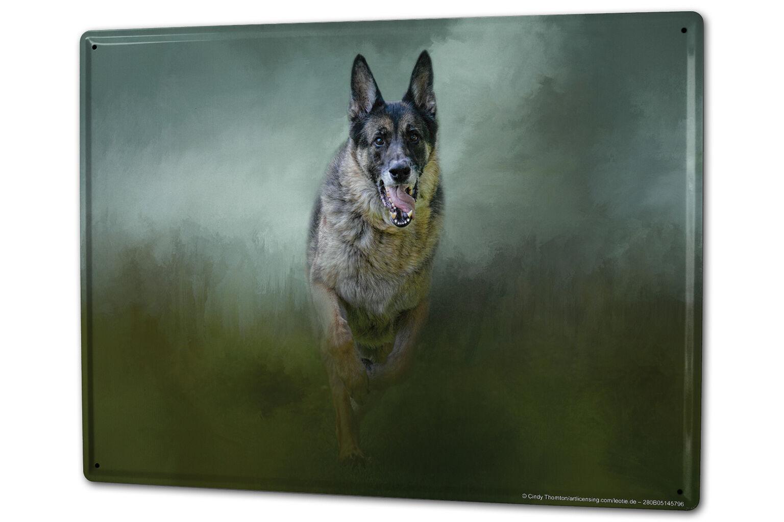 Tin Sign XXL Breed German Shepherd Dog