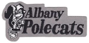 1992-95-ALBANY-POLECATS-MINOR-LEAGUE-BASEBALL-4-7-8-034-DEFUNCT-TEAM-LOGO-PATCH