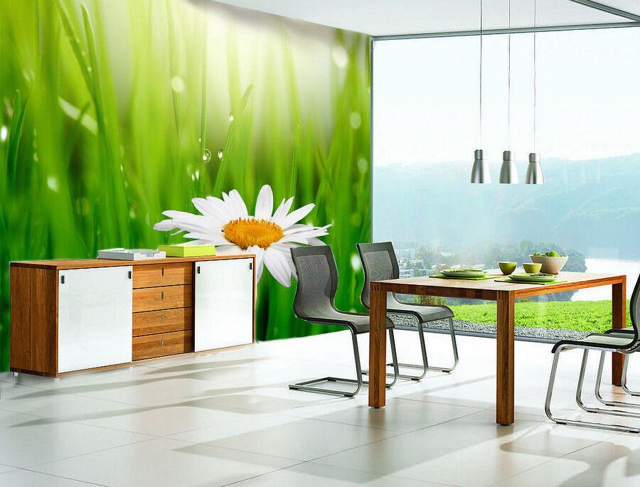 3D Green Plant Daisy 7 Wall Paper Murals Wall Print Wall Wallpaper Mural AU Kyra