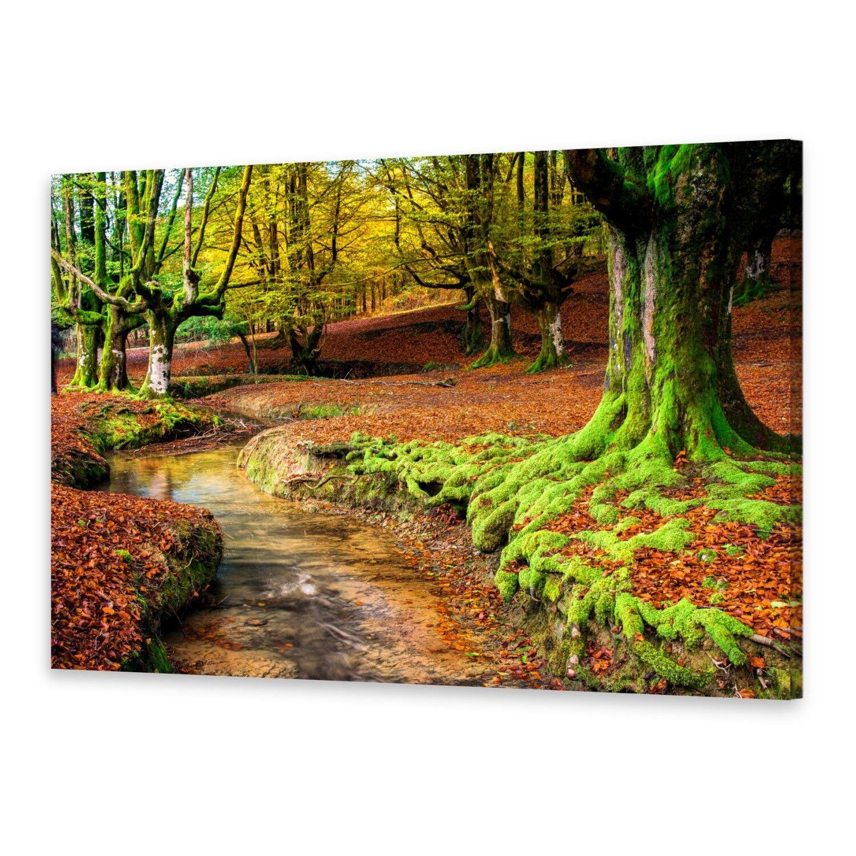 Leinwand-Bilder Wandbild Druck auf Canvas Kunstdruck Herbstwald