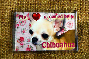 Chihuahua-Gift-Dog-Fridge-Magnet-77x51mm-Free-UK-Postage-Mothers-Day-Gift