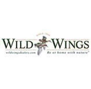 Wild Wings Art