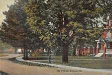 Brampton Ontario Canada The Cresent Scenic View Antique Postcard J60185