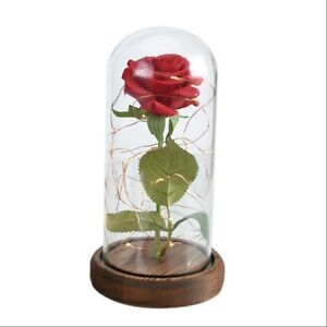 enchanted rose light up glass dome beauty and the beast led red prop belle gift ebay. Black Bedroom Furniture Sets. Home Design Ideas