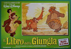 T43-Fotobusta-Die-Buch-Der-Dschungel-Walt-Disney-Animation-Zeichentrickfilm-3